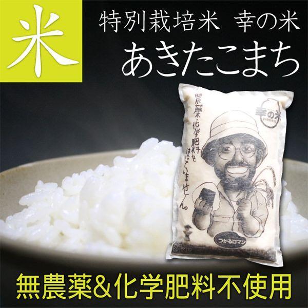 【送料無料】完全無農薬米(化学肥料不使用) あきたこまち 5kg 贈り物 ギフト お礼 お返し プレゼント お米 ごはん 玄米 胚芽米 白米 新米