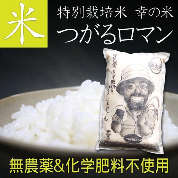【送料無料】完全無農薬米(化学肥料不使用) つがるロマン 10kg 贈り物 ギフト お礼 お返し プレゼント お米 ごはん 玄米 胚芽米 白米 新米