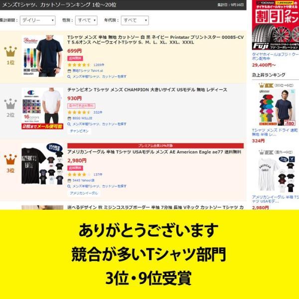 アメリカンイーグル 半袖 Tシャツ USAモデル メンズ AE American Eagle  ae77 送料無料|5445|09