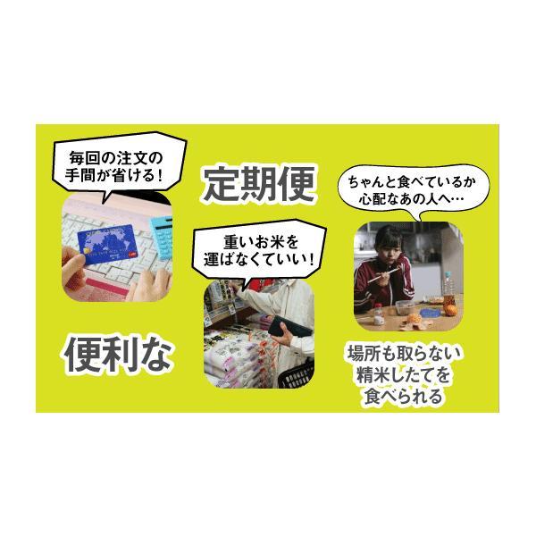 【定期便】玄米5kg×6回(6カ月コース)南魚沼産コシヒカリ|5602miwa|05
