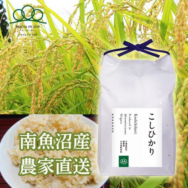 新米)5kg 令和2年度 玄米 南魚沼産コシヒカリ 5602miwa