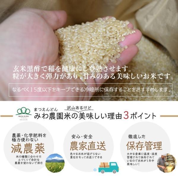令和元年度 玄米10kg(5kg×2袋) 南魚沼産コシヒカリ|5602miwa|02
