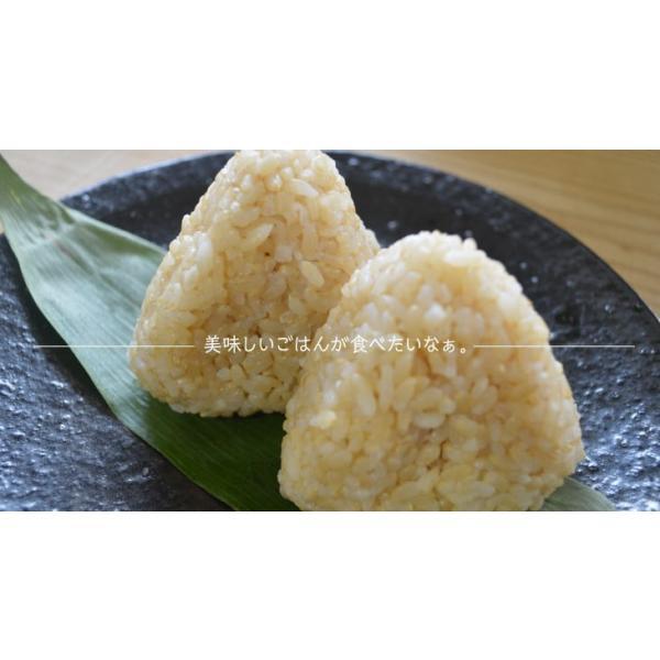 令和元年度 玄米10kg(5kg×2袋) 南魚沼産コシヒカリ|5602miwa|05