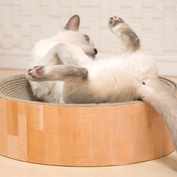 猫用爪とぎ 猫壱 バリバリボウル 猫柄 (63435) 特箱|56nyan|04