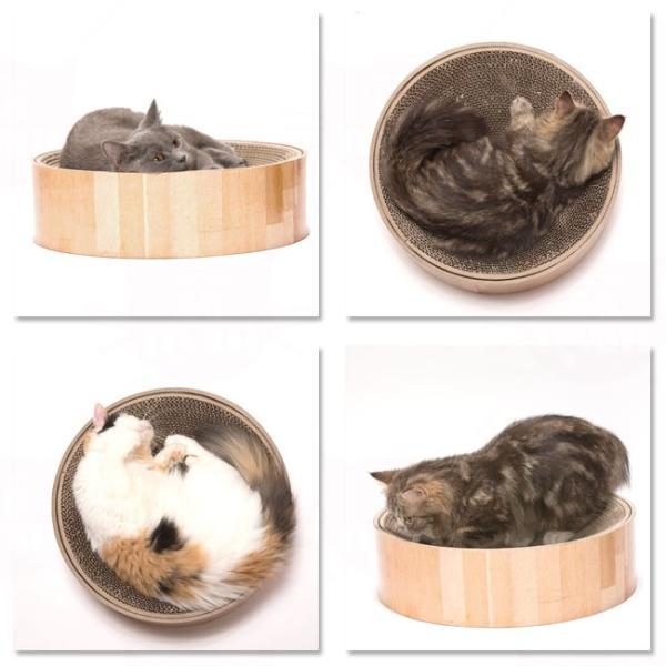 猫用爪とぎ 猫壱 バリバリボウル 猫柄 (63435) 特箱|56nyan|05