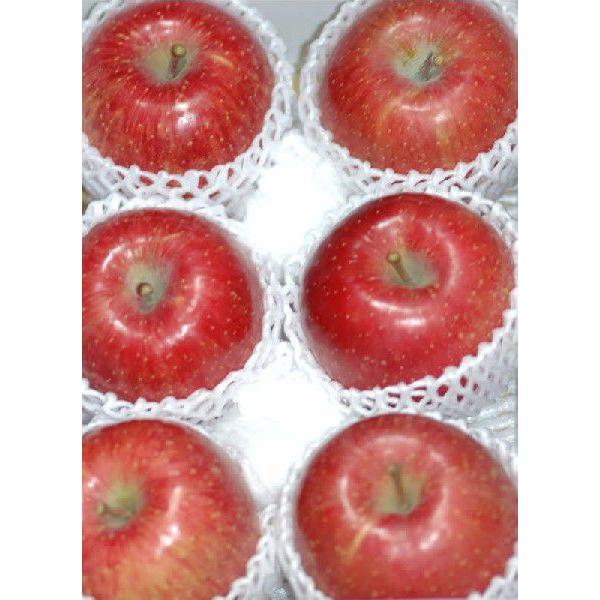 サンふじ りんご 贈答用 特選品質  約2kg 大玉6個前後入 リンゴ 林檎 さんふじ サンフジ S10