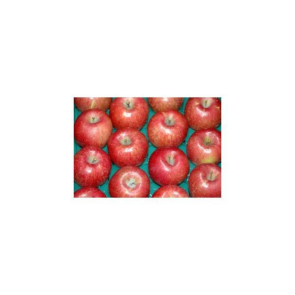 サンふじ 贈答用 特選品質 約10kg 大玉26〜32個前後入 リンゴ 林檎 さんふじ サンフジ ギフト S10