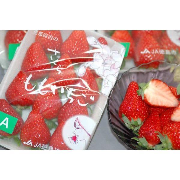 【12月出荷】徳島県産 さくらももいちご 1パック 220g入 家庭用  訳あり いちご 苺 イチゴ 12t