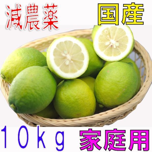 【10月以降分予約】低農薬 国産 レモン 10kg 訳あり 愛媛 瀬戸内 大三島 ore 10g SSS