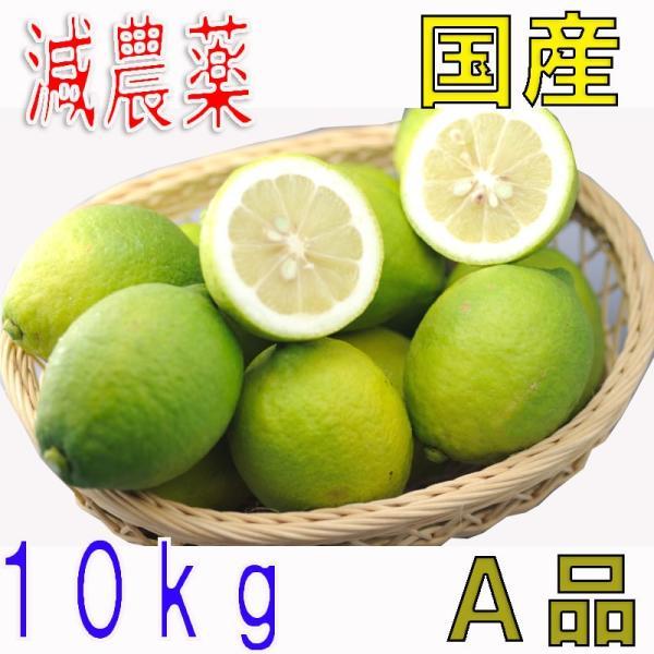 【10月以降分予約】低農薬 国産 レモン 10kg A品 愛媛 瀬戸内 大三島 ore 10g SSS