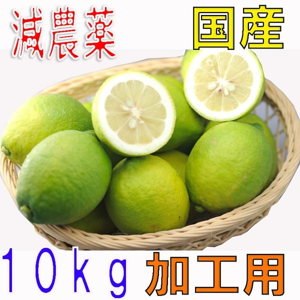 【10月以降分予約】訳あり 低農薬 愛媛 レモン 10kg 加工用 国産 瀬戸内 大三島 ore 10g SSS