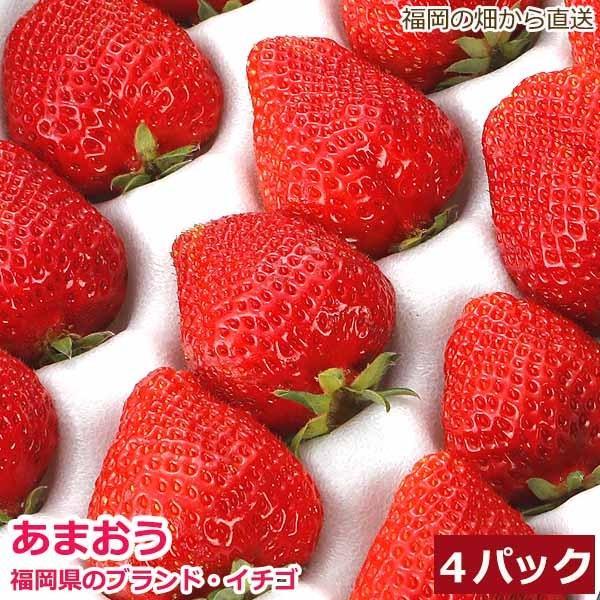 【12月出荷】低農薬 福岡 あまおう 苺 いちご 4パック 1kg 40〜64粒入 産地直送 SSS