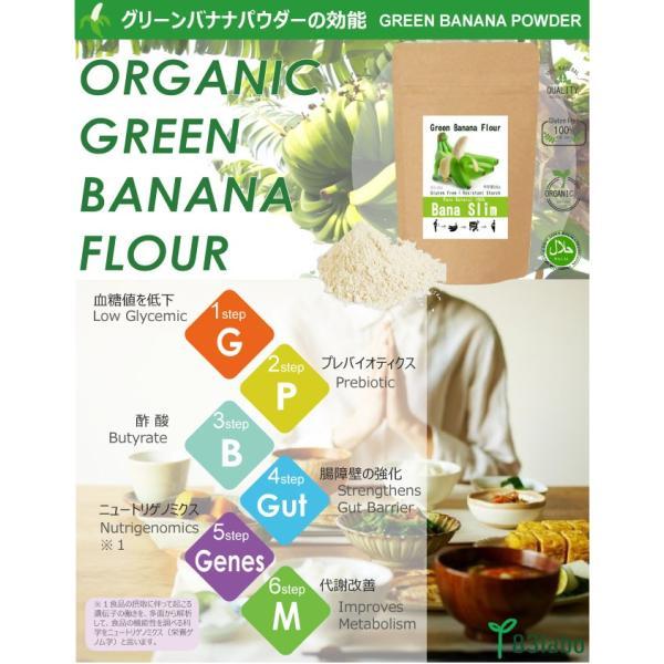 【Bana Slim】天然100%グリーンバナナパウダー!レジスタントスターチ豊富でグルテンフリー|83laboyashop|02