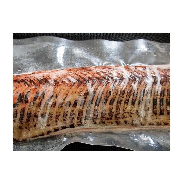 刺身 紅鮭炙り(タタキ)9kg(kg2860円税別)生食用 業務用 ヤヨイ 背のみ