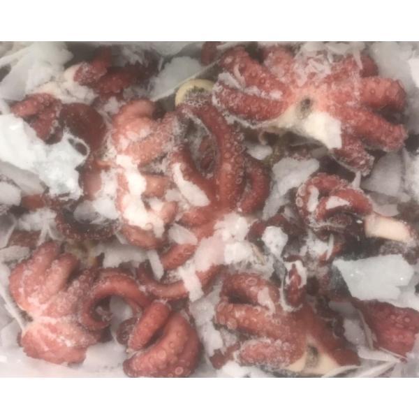 小鉢 蛸旨煮1kg×12P(P2,520円税別)たこ タコ 業務用 ヤヨイ あずま