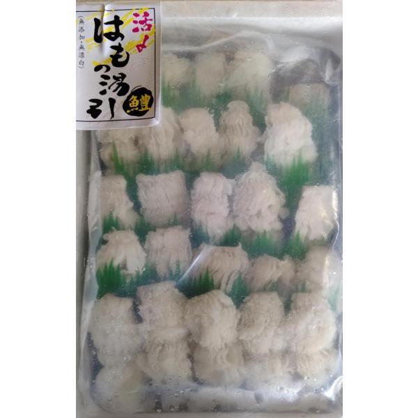 活〆湯引き鱧 500gx10P(P1820円税別)生食用 業務用 ヤヨイ