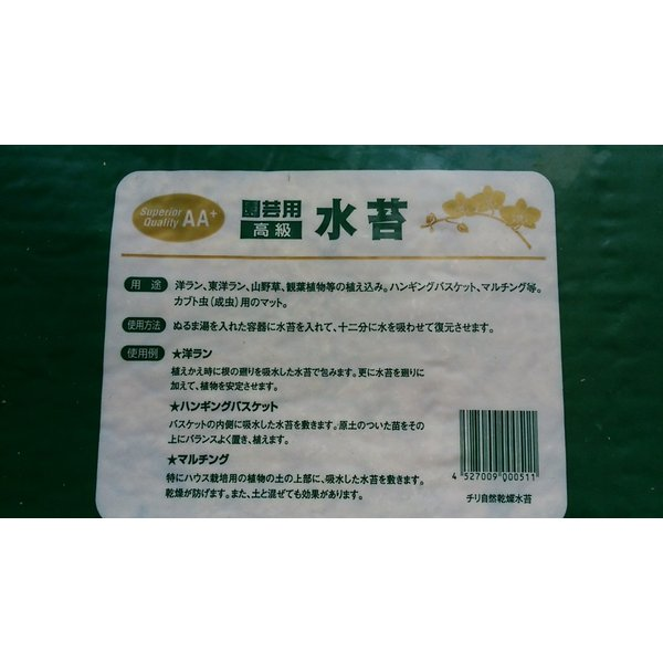 チリ産水苔 約500g  圧縮品 AA+|8hana-gift|03