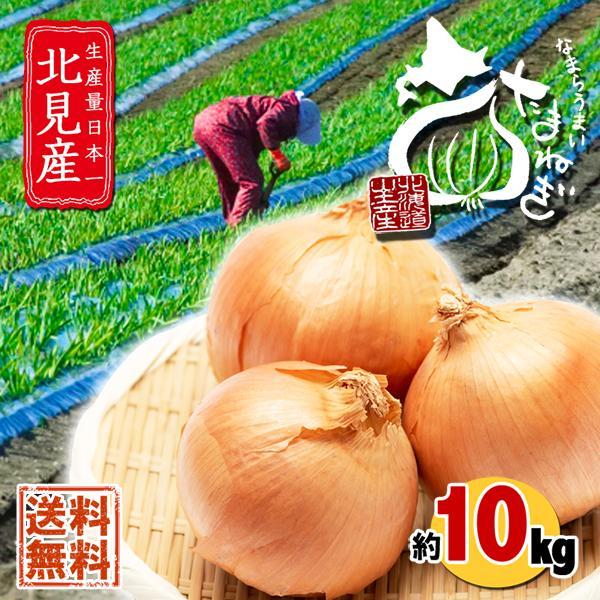 北海道 北見産 なまらうまい 玉ねぎ 10kg 送料無料 まとめ買い 玉葱 たまねぎ タマネギ 玉ネギ お取り寄せ もったいない 野菜 食品