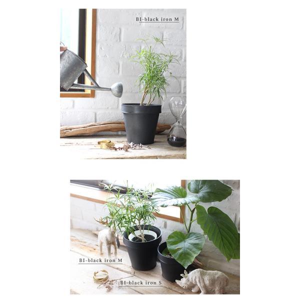 鉢カバー プランター 『プラクト プランター ポット Mサイズ』 おしゃれ 5号 メッキ ブリキ 植木鉢 鉢  観葉植物 植物 インテリア 植栽 プランターカバー|a-depeche|07