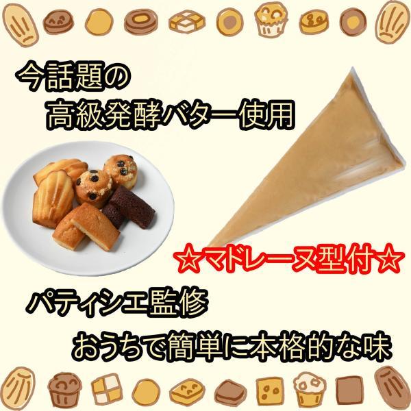 フィナンシェ生地、マドレーヌ生地、マフィン生地3種セット マドレーヌ型付 発酵バター おうちカフェ 簡単焼き菓子