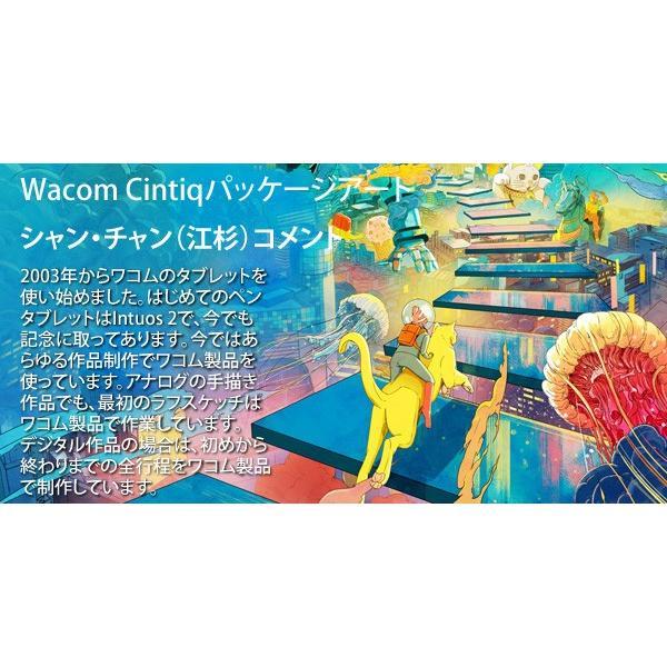 ワコム 液晶ペンタブレット Wacom Cintiq 16 DTK1660K0D 15.6インチ フルHD ディスプレイ Wacom Pro Pen 2 対応 15.6型|a-do|10