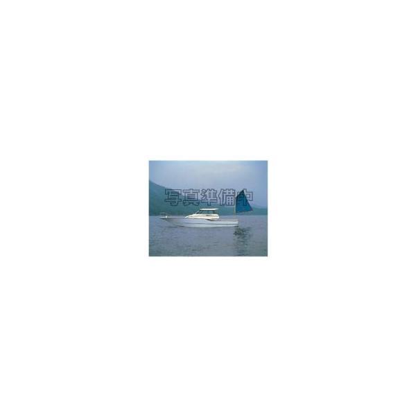 【ACCEL/アクセル】グラスビーズ(ERバージョン) Mサイズ 02 DKレッド 仕掛・うき 釣小物 001021