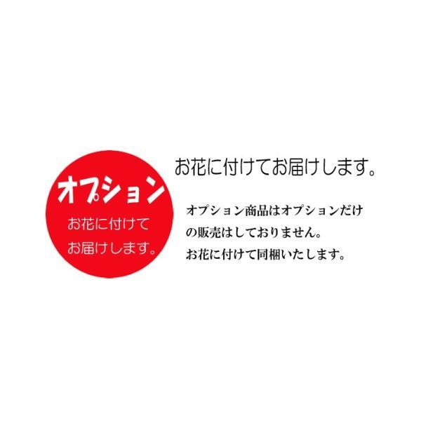 【オプション】リボン掛け ラッピング  花ギフトに付随した商品です。オプション商品 クリアケース対応商品|a4s|04