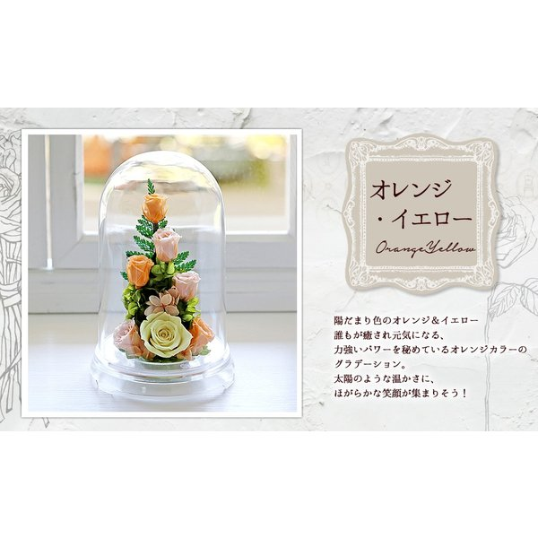 プリザーブドフラワー PR バラ 誕生日プレゼント 結婚記念日 プレゼント 還暦祝い 退職祝い 女性 ギフト 結婚祝い 贈り物|a4s|05