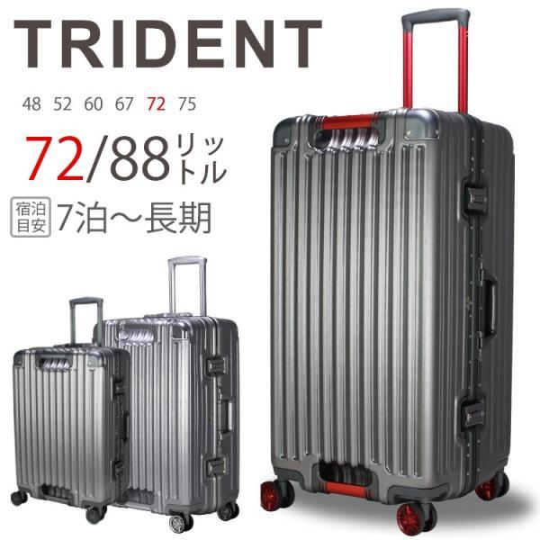 トライデント TRI1102-73