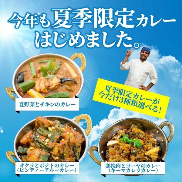 神戸アールティー インドカレーお試し福袋 送料無料 170gx5品 手作り 本格インドカレーのお得な福袋 セール|aarti-japan|04