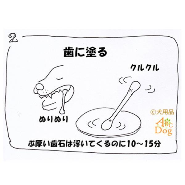 マジックゼオ・プロ 犬 黄ばみ 歯周病予防 すすぎ不要|abcdogshop|06