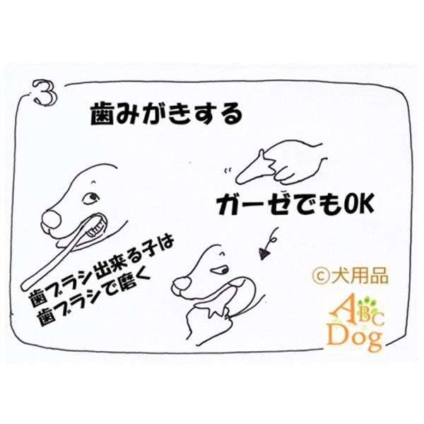 マジックゼオ・プロ 犬 黄ばみ 歯周病予防 すすぎ不要|abcdogshop|07