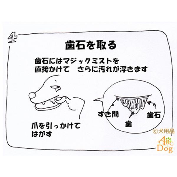 マジックゼオ・プロ 犬 黄ばみ 歯周病予防 すすぎ不要|abcdogshop|08