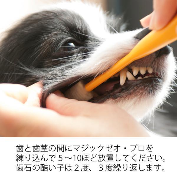 マジックゼオ・プロ 犬 黄ばみ 歯周病予防 すすぎ不要|abcdogshop|10