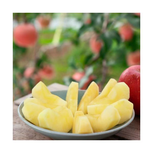 りんご(幻のりんご こうとく) 2kg 「ふくしまプライド。体感キャンペーン(果物/野菜)」|abekajuen