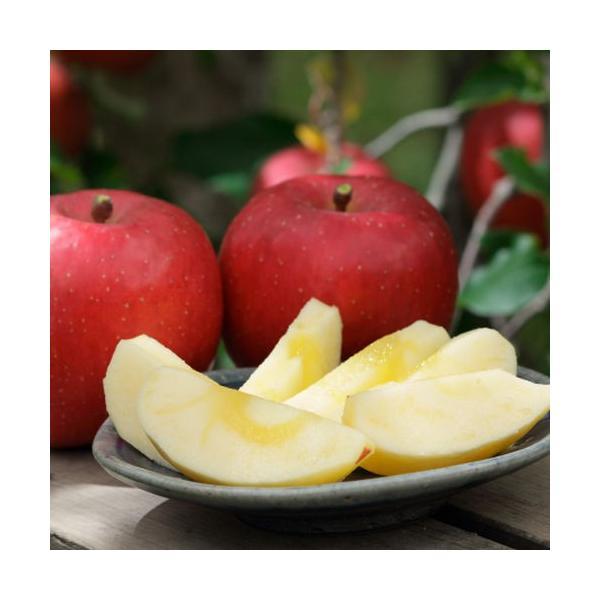 りんご(サンふじ) 贈答用3kg|abekajuen