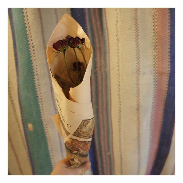 TOPANGA DRY FLOWER ROSE ¥500|abracadabra|03