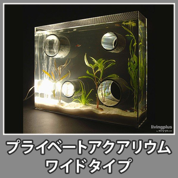 水槽 おしゃれ アクアリウム 照明付 インテリア アクリル デザイナー『プライベートアクアリウム(ワイド)』