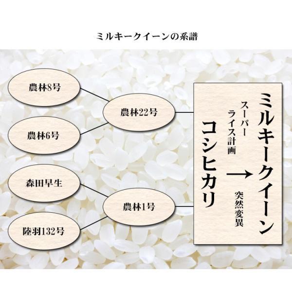 米 5kg 送料別 ミルキークイーン 福島県産 令和元年産 米 5キロ お米  ふくしまプライド。体感キャンペーン(お米) adachinet-umai 06