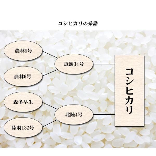 米 5kg 送料別 白米 新米 コシヒカリ 福島県産 令和元年産 お米 5キロ 食品 ふくしまプライド。体感キャンペーン(お米)|adachinet-umai|06