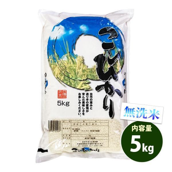 新米 無洗米 5kg 送料別 コシヒカリ 愛知県産 令和3年産 米 5キロ お米 あす着く食品