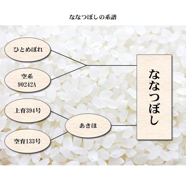 米 5kg ななつぼし 北海道産 29年産 1等米 白米 お米 送料無料 北海道・沖縄・一部を除く adachinet-umai 05