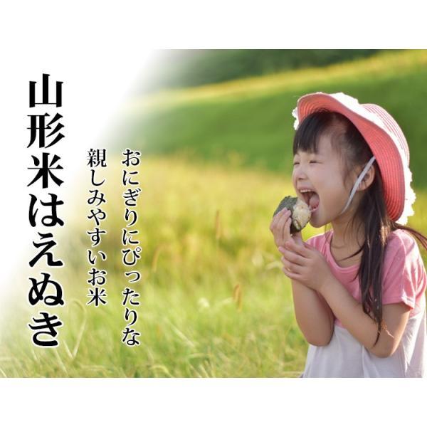 米 10kg はえぬき 山形県産 29年産 1等米 白米 5kg×2袋 お米 送料無料 北海道・沖縄・一部を除く|adachinet-umai|02