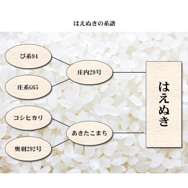 米 10kg はえぬき 山形県産 29年産 1等米 白米 5kg×2袋 お米 送料無料 北海道・沖縄・一部を除く|adachinet-umai|05