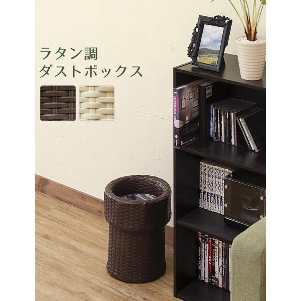 ゴミ箱 ごみ箱 ラタン調ダストボックス TMR-11|adhoc-style|04