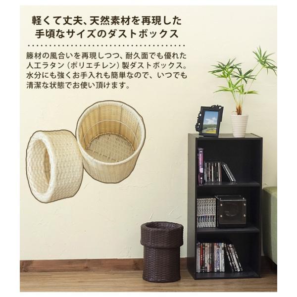 ゴミ箱 ごみ箱 ラタン調ダストボックス TMR-11|adhoc-style|05