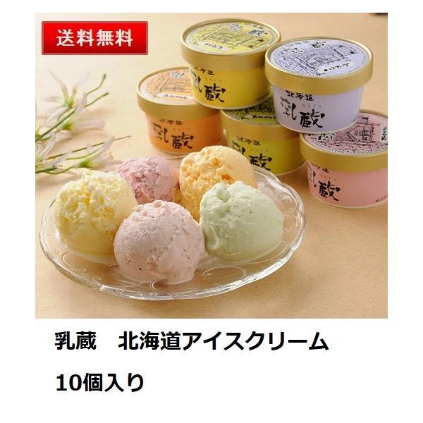 乳蔵 北海道アイスクリーム10個セット  送料無料 お取り寄せ スイーツ デザート グルメ ギフト 贈り物 お中元 お歳暮 御年賀 内祝い
