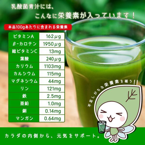 ( 乳酸菌 国産青汁 : 9週間分 ) 3g × 63本 セール 青汁 酵素 健康 ダイエット ギフト 国産 大麦若葉 乳酸菌 食物繊維 送料無料 ギフト|aemotion|04