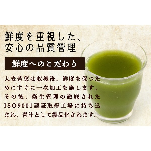 ( 乳酸菌 国産青汁 : 9週間分 ) 3g × 63本 セール 青汁 酵素 健康 ダイエット ギフト 国産 大麦若葉 乳酸菌 食物繊維 送料無料 ギフト|aemotion|09