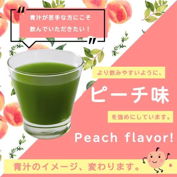 【フルーツ青汁:1か月分】90g(3g×30包)青汁 酵素 ダイエット 健康 フルーツ 酵素  国産 ポイント消化 ワンコイン 送料無料 メール便 aemotion 16